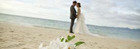 Mariage civil – Votre célébrant de mariage!